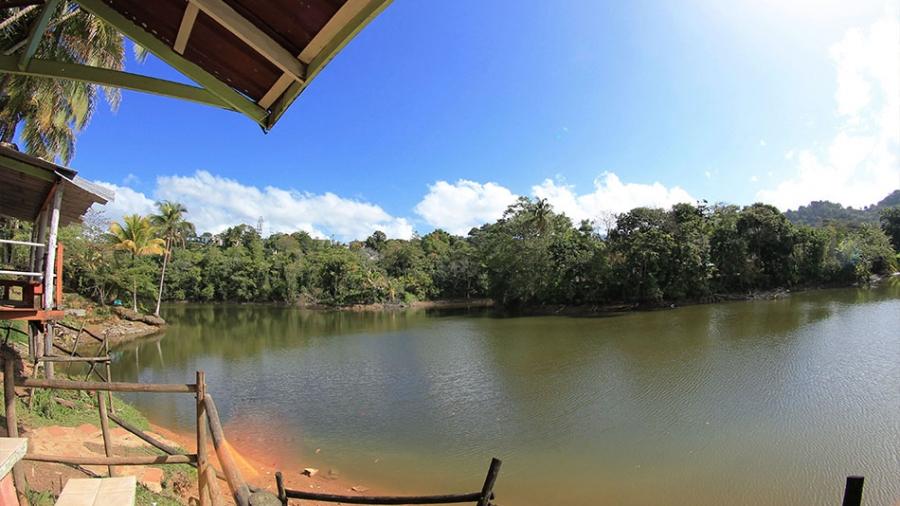 lagolandianaranjito